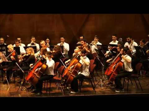 Stanley Shalom Zielony Technion Orchestra Choir Concert Janu