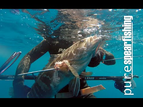 "Deep spearfishing with Euro-African Champion -Pure Spearfishing Ep.5-""The White Grouper Chronicle"""