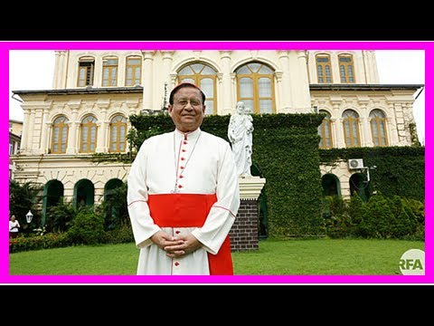 News today-Cardinal to call Myanmar the criticism of aung san suu kyi not fair before the visit of