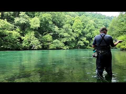 Fly Fishing On The Little Red River In Arkansas
