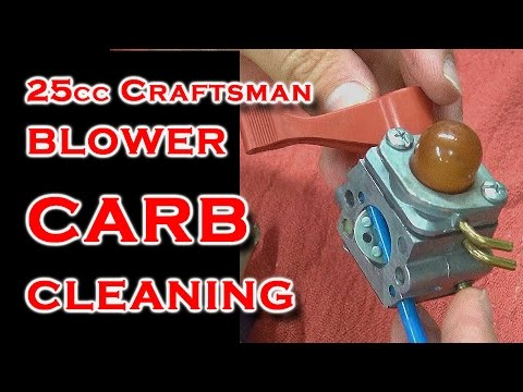 Carb Cleaning 25cc Blower