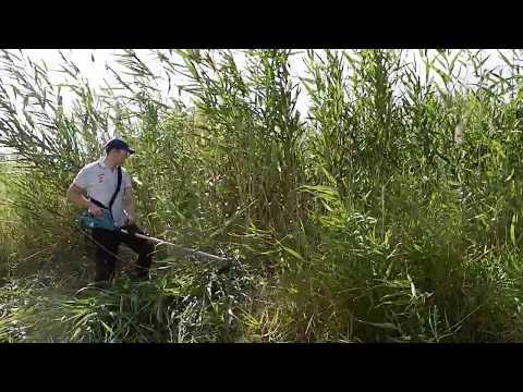 Видео обзор: Триммер BOSCH AFS 23-37