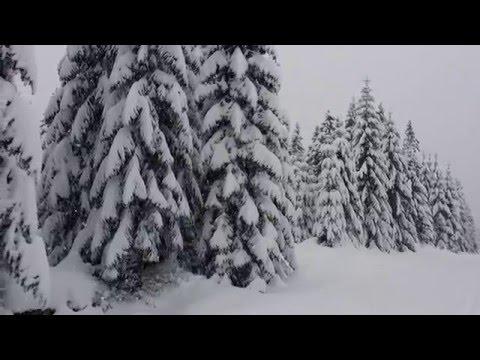 Zima v Jizerských Horách 4K