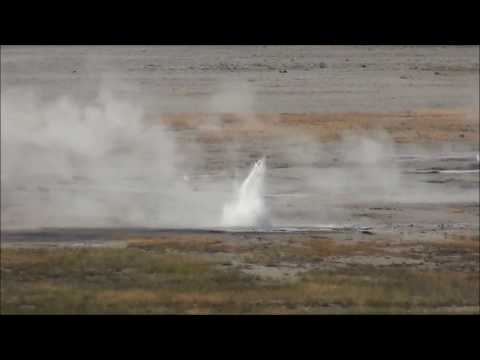Sprinkler Geyser (Lower Geyser Basin) (2017) (HD)