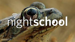 NightSchool: Special Topics in Frog Science