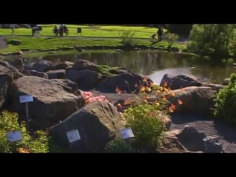 Volcanic Iceland Vacation Travel Video Guide