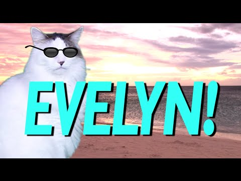 HAPPY BIRTHDAY EVELYN! - EPIC CAT Happy Birthday Song