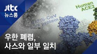 2003년 공포의 역습? 우한 폐렴, 사스와 유전자 79.5% 일치 / JTBC 뉴스룸
