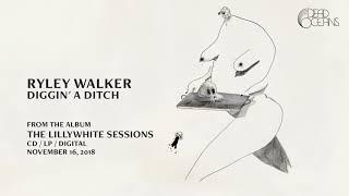 Gambar cover Ryley Walker - Diggin' A Ditch (Official Audio)