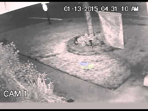 Camera 1 1-13-14 Break in to Chevy Blazer Antelope CA