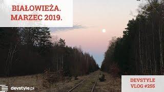 Białowieża. Marzec 2019. [devstyle vlog #255]