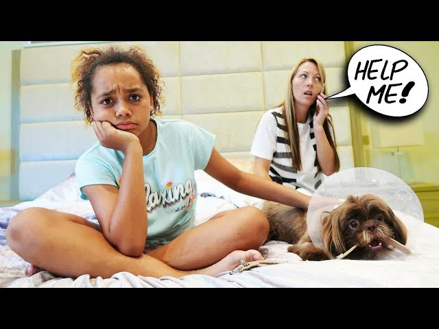 TIANA'S PUPPY IS SICK!!