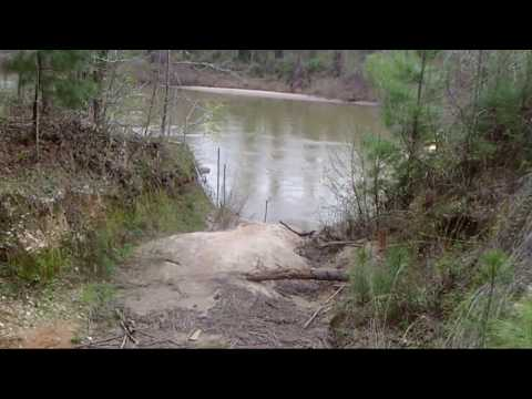 Cat Fishing With Shrimp In The Oconee River