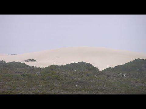 De Hoop Nature Reserve, Overberg - South Africa