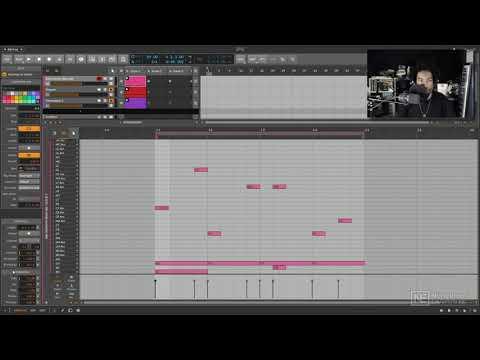 Bitwig Studio 401: Bitwig Studio Advanced Production Workflows - Chance Operator