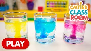 Caitie's Classroom | Playing With Colored Water