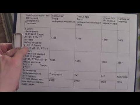 АТ162 Бизнес на червях Дендробена Ткаченко. Деньги и физический доход