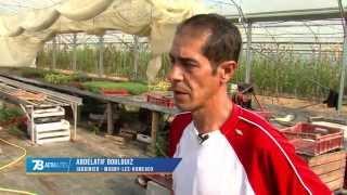 Les Jardins de Cocagne recherchent des fonds