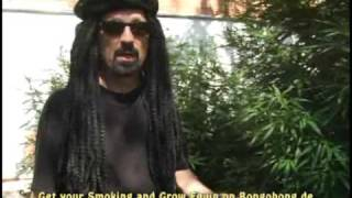 Growing Weed Basics-Tipf for Growing Marijuana Outdoors-even good Tips for Indoor Growing