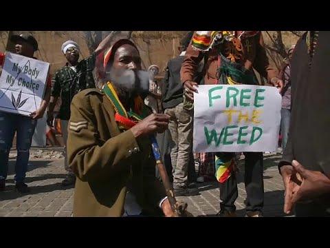 شاهد : احتفالات بتشريع استخدام الماريجوانا في جنوب أفريقيا…  - نشر قبل 17 دقيقة