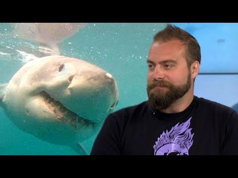 Marine biologist on how to survive a shark attack