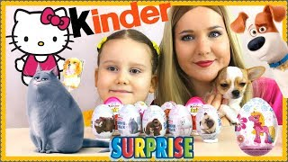 Шоколадные Яйца Тайная Жизнь Домашних Животных Киндер сюрприз для девочек Хелло Китти Пони Кот Домик