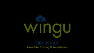 Wingu Cloud Dashboard - Associate Floating IP