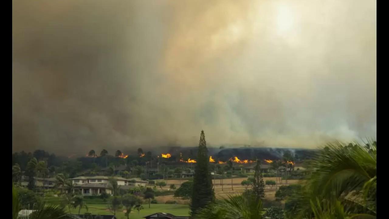 maui fire - photo #32
