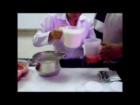 Elaboracion de Yogurt Artesanal