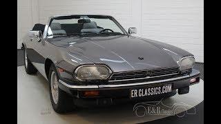 Jaguar XJS 1991 -VIDEO- www.ERclassics.com