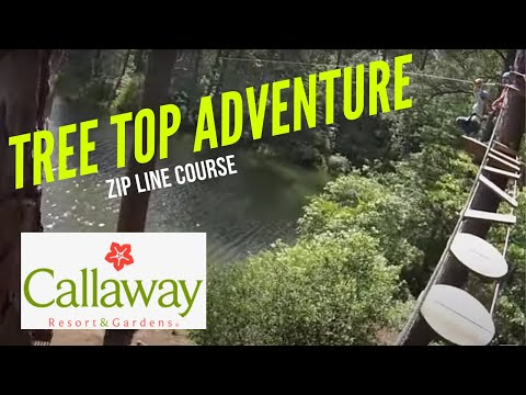 Tree Top Adventures - Callaway Gardens In Pine Mountain, Georgia