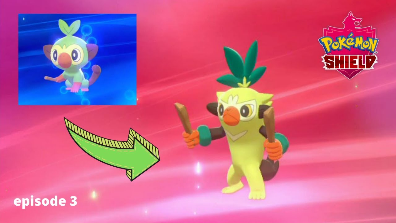 What Does Grooky Evolve Into / Why are some animals and birds disappearing nowadays?