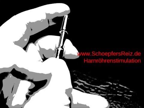 SchoepfersReiz.de - AnfangsDehner lang - Urethral Sounding - Dilator