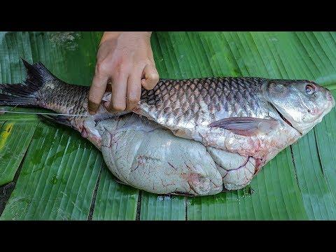Amazing Cooking Tasty Big Fish Eggs Recipe