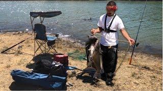 Killing them Big catfish| Good day fishing Los Vaqueros