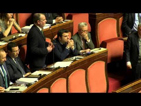 """Ddl Cirinnà, Calderoli: """"Cepchild…scusate, Stepchildren"""""""