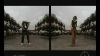 Rinocerose - Music Kills Me
