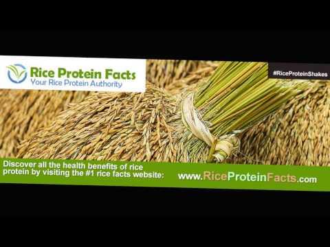 Rice Protein Diet