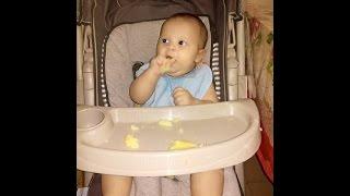blw primeiro almoo batata bebe de 6 meses comendo sozinho