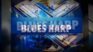 Organic Loops - Blues Harp