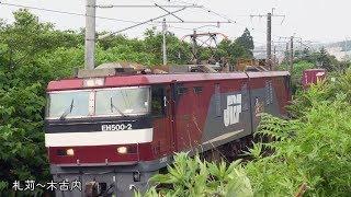 (HD)七夕の日の珍列車