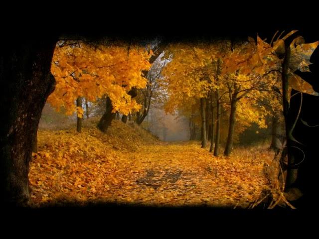 Изображение предпросмотра прочтения – ЕленаВиноградова читает отрывок изпроизведения «Стихотворение Осень.» И.С.Тургенева