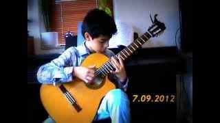 Gülümcan/Gulumcan ( Wonderful Instrumental Turkish Music on Classical Guitar )