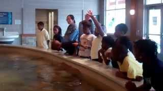 Class 3-4 Turtle Back Zoo October 28, 2014