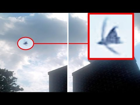 Did This Person Capture A Black Angel Above Pennsylvania...?