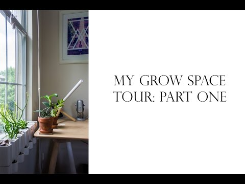 My Grow Space - Part One