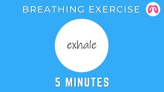 Breathing Exercises To Stop A Panic Attack Now | TAKE A DEEP BREATH
