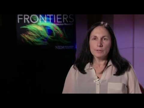 Dr. Marina Wolf Interview
