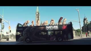 ultimate dinosaur summer road trip
