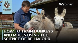 How to Train Donkeys and Mules Using the Science of Behaviour | The Donkey Sanctuary Webinars